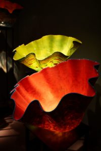 Chihuly beauty by Gabor Szendrei